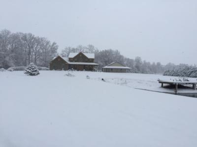 Snow - Nov 17 - 5