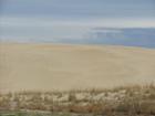 Sand_dune_1